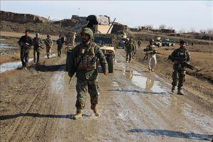 Lệnh ngừng bắn một phần tại Afghanistan bắt đầu có hiệu lực