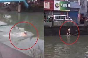 Cụ già bơi qua sông để tránh trạm kiểm tra chống dịch Covid-19