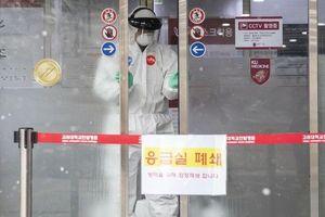 Cập nhật 15h ngày 23/2: Ca tử vong thứ 5 do Covid-19 ở Hàn Quốc, khẩn trương sơ tán công dân trên tàu Diamond Princess