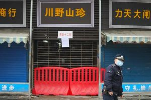 Nghiên cứu mới: Covid-19 không bắt nguồn từ chợ hải sản Vũ Hán