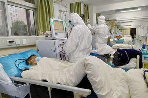 WHO: Còn sớm để nói SARS-Covid-19 là 'đại dịch'
