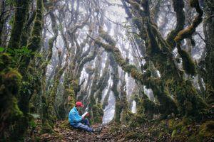 Cuộc gặp gỡ cùng mây, sương và rêu trên đỉnh Tà Xùa