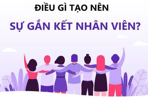 Mối quan hệ giữa Gắn kết - Trung thành - Hiệu quả tổ chức ở Ngân hàng Nông nghiệp và Phát triển Nông thôn chi nhánh Tỉnh Bình Thuận