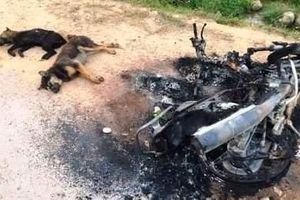 Nghệ An: Nghi câu trộm chó, 2 đối tượng bị đánh thương vong
