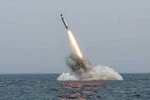 Ấn Độ tiếp tục phát triển tên lửa đạn đạo phóng từ tàu ngầm