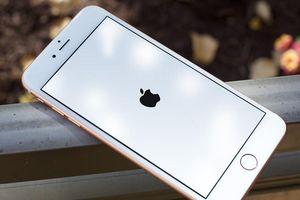 4 cách sửa lỗi iPhone bị treo logo
