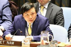 Việt Nam ủng hộ mạnh mẽ việc triển khai Hiệp ước NPT