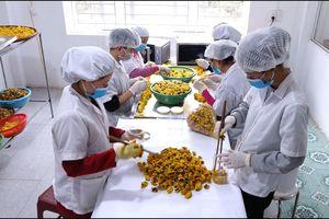 Ứng dụng công nghệ trong sản xuất, chế biến nông sản