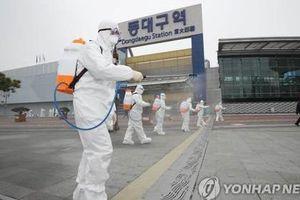 Hàn Quốc xác nhận 1 người Việt nhiễm SARS-CoV-2