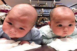 Cặp song sinh 'đẹp trai hơn cả bố' của Trương Nam Thành