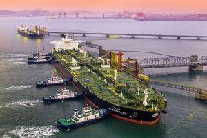 Giá dầu thô 'rơi tự do', chạm mức thấp nhất kể từ tháng 12/2018