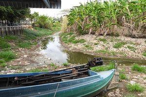 Xâm nhập mặn ở đồng bằng sông Cửu Long sẽ diễn ra gay gắt