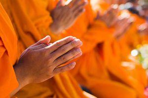 Suy nghiệm lời Phật : Chuyển hóa giải đãi và nghi ngờ