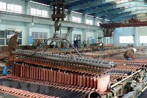 TKV sẽ vận hành dự án luyện đồng Lào Cai trong quý III/2020