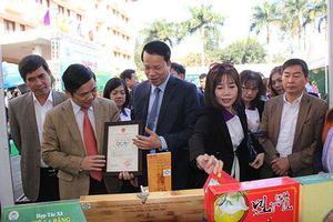 OCOP góp phần phát triển kinh tế xã hội và xây dựng nông thôn mới