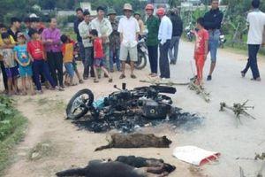 Nghệ An: Khởi tố vụ án đánh thương vong 2 người nghi trộm chó