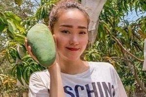Quyền Linh, Minh Hằng và loạt nghệ sĩ sở hữu cơ ngơi hàng nghìn m2