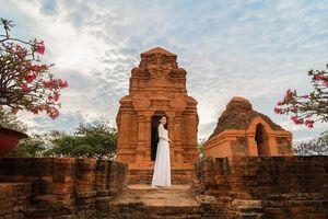 Hồng Trang được cấp phép thi Miss Eco International 2020
