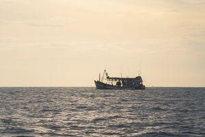Xử phạt chủ tàu đánh cá vi phạm vùng biển nước ngoài 1 tỷ đồng