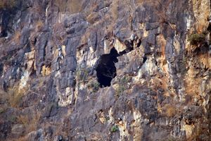 Sơn La: Giải cứu thành công 4 người mắc kẹt tại hang núi bản Hài