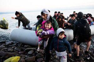EU thúc đẩy giải quyết vấn đề người di cư