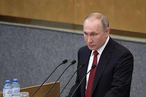 Tổng thống Putin không loại trừ khả năng tái tranh cử trong năm 2024