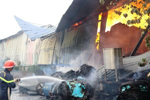 5 giờ chìm trong lửa, Công ty giấy mất hàng tỷ đồng