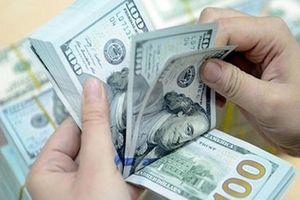 Tỷ giá trung tâm tăng lên 23.198 đồng/USD
