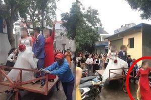 Màn rước dâu có 1-0-2: Cô dâu chú rể đứng trên xe bò, được kéo đi bởi người phụ nữ ăn vận sang trọng khiến MXH xôn xao thắc mắc