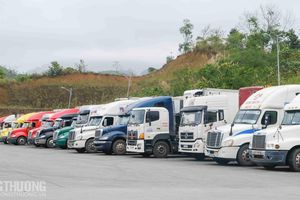 Xuất nhập khẩu khả quan, 1.674 xe nông sản, trái cây được thông quan