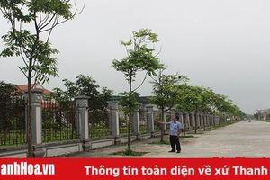 Nhân rộng mô hình 'Hàng cây cựu chiến binh'