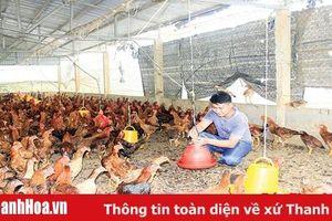 Phát huy vai trò của tổ chức đoàn trong phát triển kinh tế ở Lang Chánh