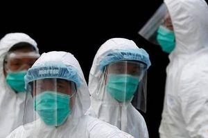 Bên lề dịch Covid-19, Philippines phát hiện lây lan cúm gia cầm