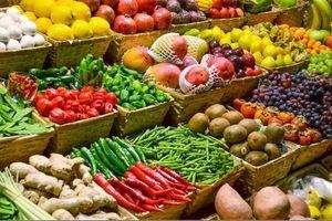 Công bố bảng xếp hạng địa phương về an toàn thực phẩm nông, lâm, thủy sản năm 2019