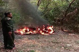 Ba xe máy của nhân viên bảo vệ rừng nghi bị đốt?