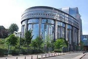 Nghị viện EU dời các phiên họp sang Bỉ vì dịch COVID-19