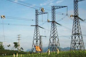 Trungnam Group – Doanhnghiệp tư nhân đầu tiên được đầu tư hạ tầng truyền tải điện