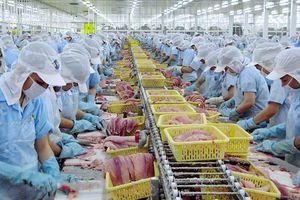 Xuất khẩu nông sản trong bối cảnh dịch Covid-19: Nỗ lực vượt khó