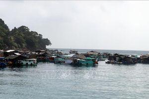 Phát triển bền vững nghề cá - Bài 2: Chuyển hướng sản xuất