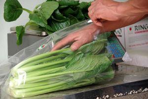 Những bó rau nghĩa tình từ biên giới về với người dân cách ly ở Hà Nội
