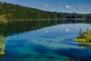 Khám phá hồ nước ẩn chứa cả khu rừng cổ xưa