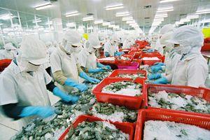Vi phạm công bố thông tin, Seaprodex và Than miền Bắc bị phạt 100 triệu đồng