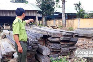 Khóa chặt 'con đường lâm sản' ở Phước Sơn