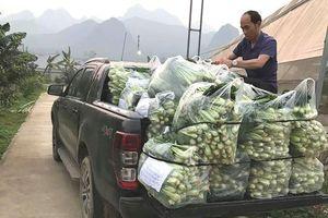 Ấm lòng mùa dịch: Hàng tấn rau sạch vùng cao gửi về tặng các khu phố cách ly Hà Nội