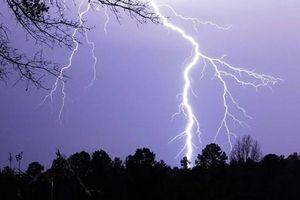 Nam sinh bị sét đánh tử vong khi trú mưa dưới gốc cây