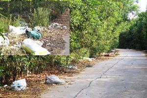 Bãi rác giữa rừng keo Núi Nảy