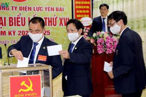 Đại hội Đảng cấp cơ sở tỉnh Yên Bái diễn ra ngắn gọn, an toàn