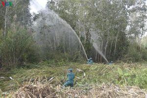 Hơn 37.600 ha rừng ở Cà Mau báo cháy cấp cực kỳ nguy hiểm