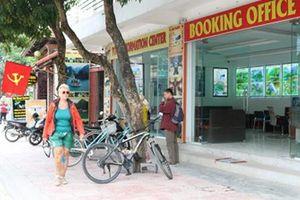 Doanh thu từ du lịch các tỉnh Đồng bằng sông Hồng giảm mạnh