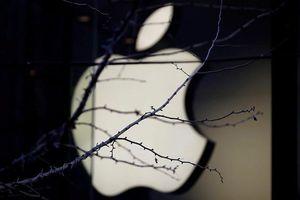 Chi tiết đặc biệt khiến ai cũng ngỡ ngàng trong Apple Store của Apple